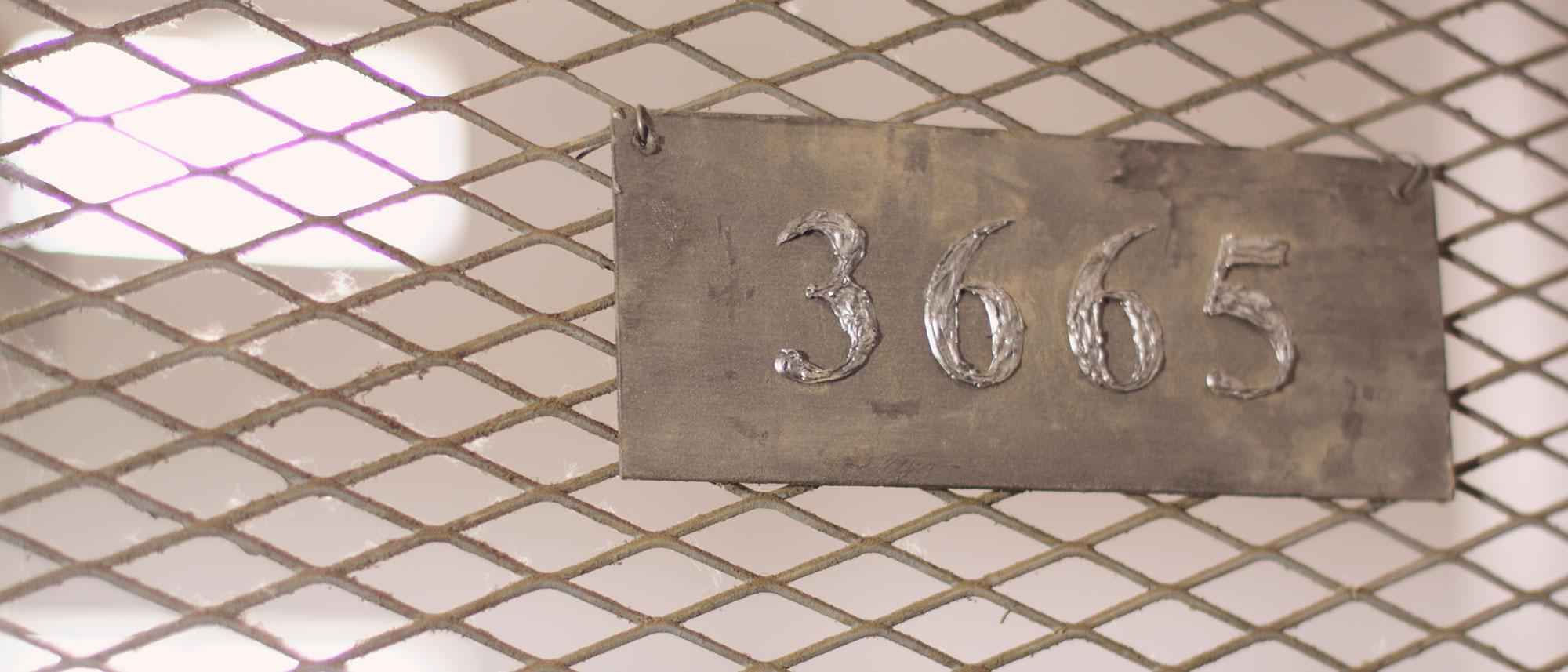 3665 Galeria 39